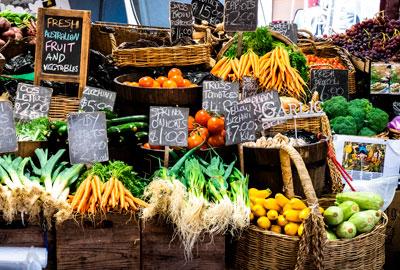 erp productos hortofruticolas